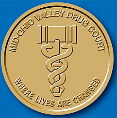WBSC119C Drug Court Customized Coin