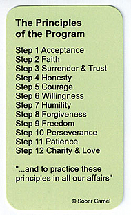 SCWC25 Principles Wallet Card